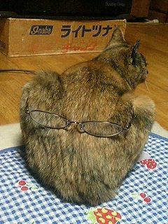 image/utakata-d-2006-01-05T22:10:15-1.jpg